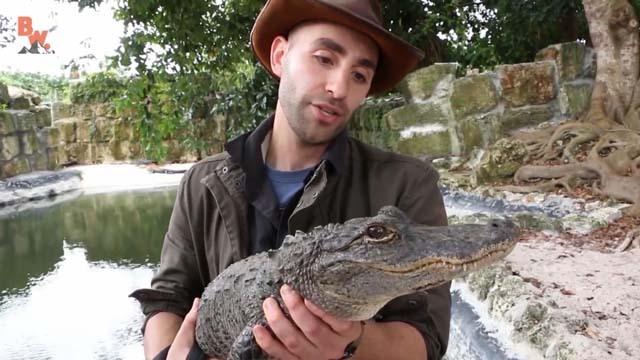 被鳄鱼咬是怎样的一种体验?