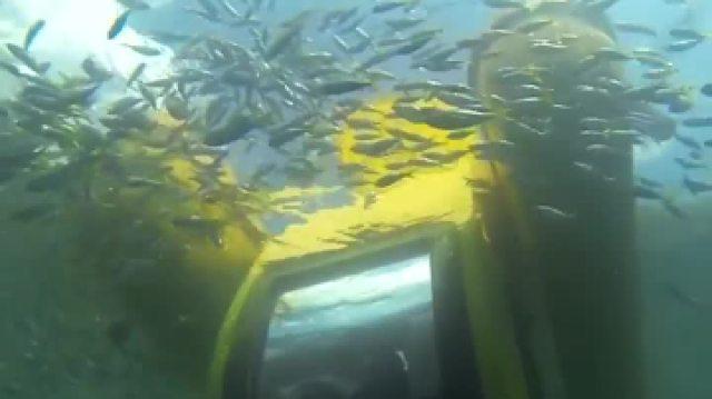 水下观光巴士,一起看海底世界!