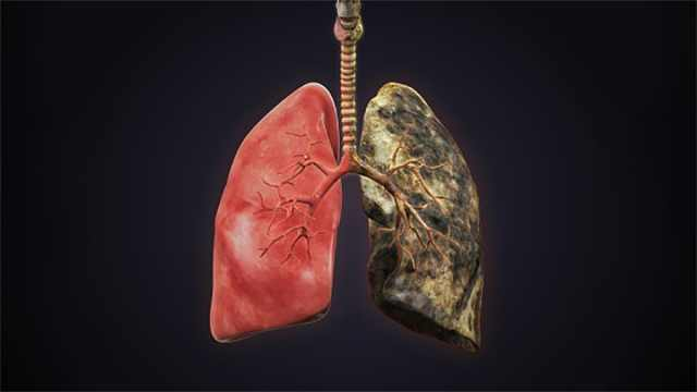 为什么有些人就是戒不掉烟?