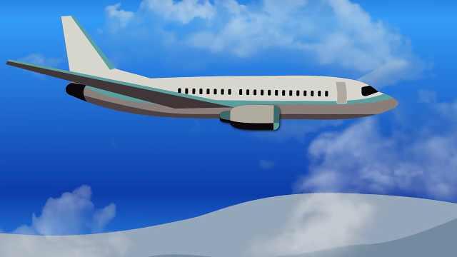 鸟撞飞机引发航班事故的概率有多大