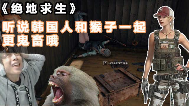 听说韩国人和猴子在一起更鬼畜哦!
