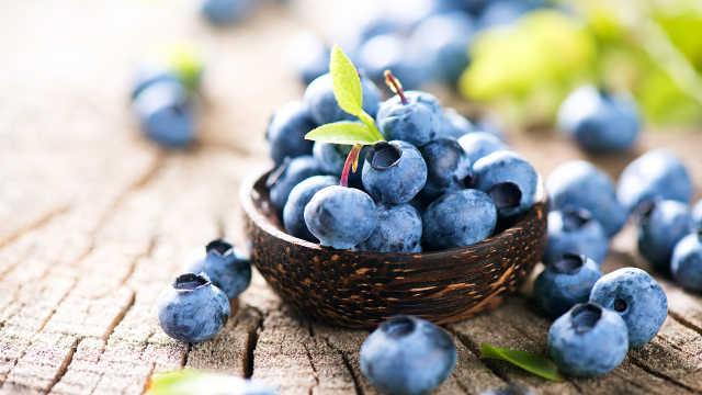 没想到!我们吃的蓝莓是因为他普及
