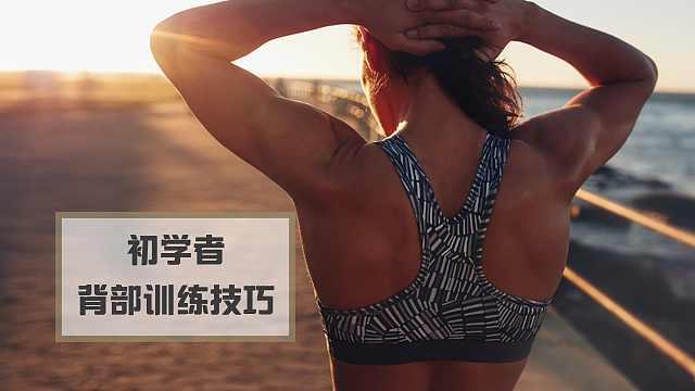 初学者背部肌肉训练技巧