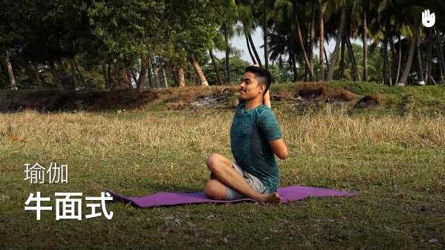 sikana瑜伽教程:牛面式