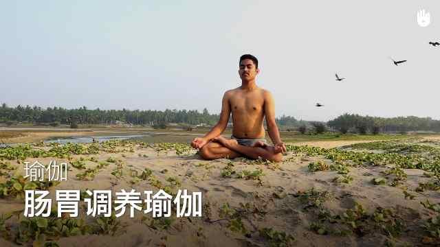 sikana瑜伽教程:肠胃调养瑜伽
