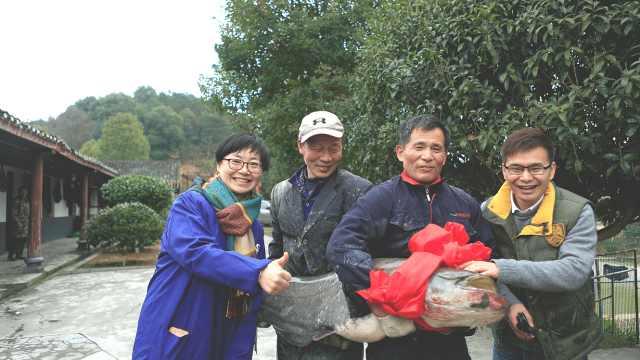 12年一次的冬捕,鱼王重近70斤