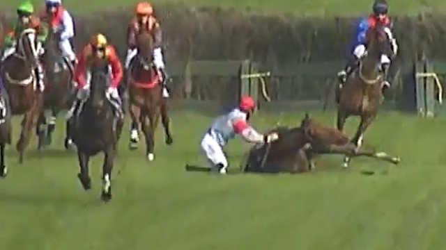 摔倒后立刻上马,赛马选手逆转夺冠