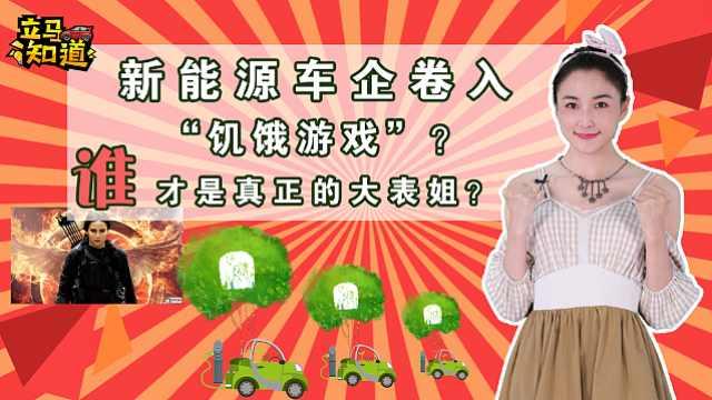 """新能源车企卷入""""饥饿游戏""""?"""