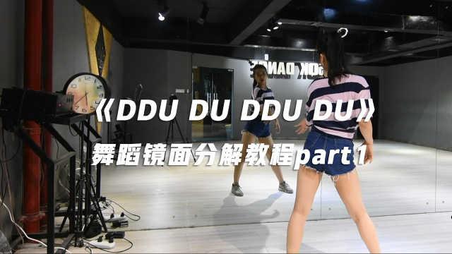 《DDU DU DDU DU》舞蹈分解教程P1