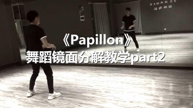 《Papillon》舞蹈镜面分解教学p2
