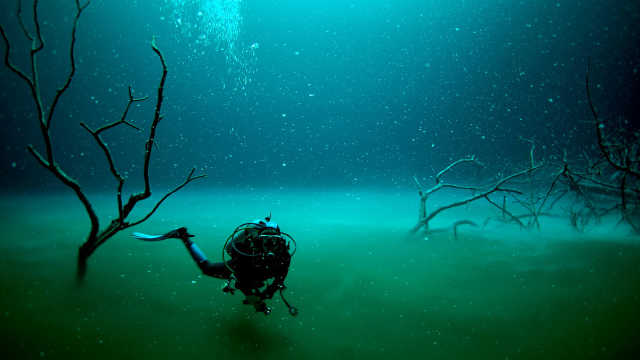 颠覆认知!科学家在海底发现河流
