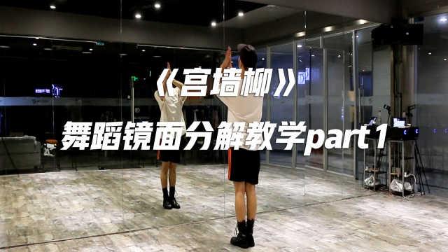 《宫墙柳》舞蹈镜面分解教程part1