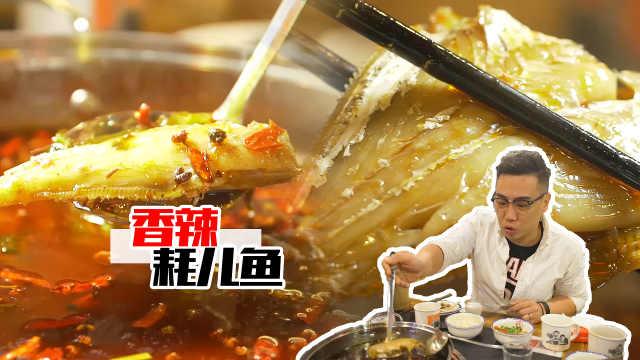 四川老夫妻在深圳开的耗儿鱼串串店
