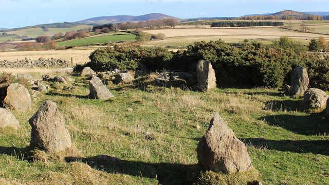 苏格兰发现史前石阵?农民:我摆的
