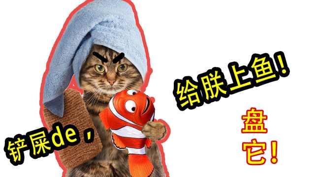 猫主子爱的食谱为什么是鱼和老鼠?