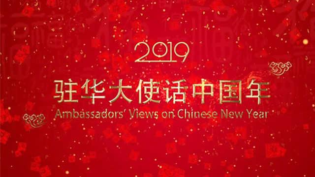驻华大使话中国年