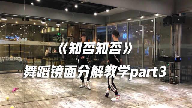 《知否知否》舞蹈镜面分解教学p3