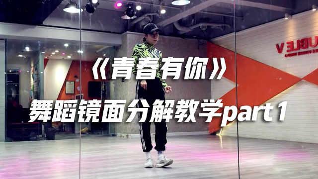 《青春有你》舞蹈镜面分解教学p1