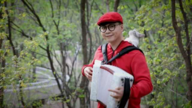 《小红帽》——手风琴版
