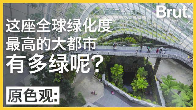 绿化最高的大都市,到底有多绿?