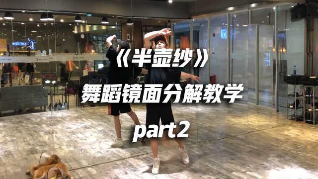 《半壶纱》舞蹈镜面分解教学part2
