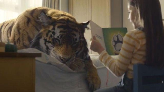 WWF圣诞宣传:成为老虎保护者
