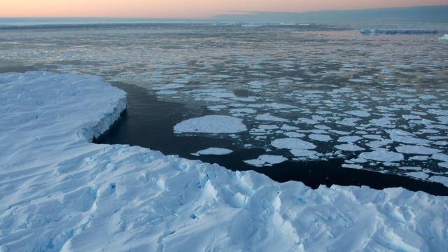 冰川提前一年崩解,阻断企鹅的路