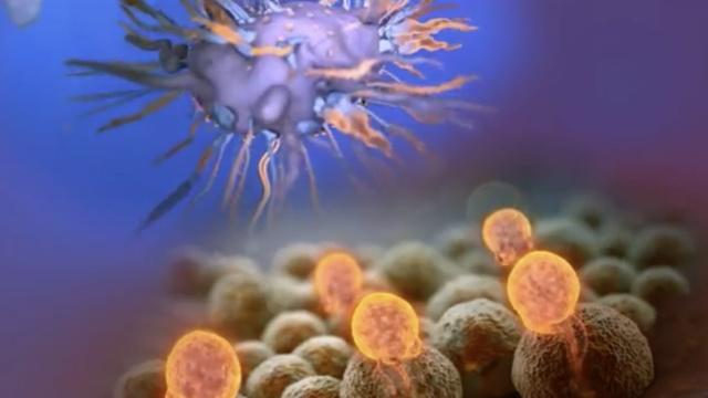前列腺癌福音:中企拿下美原创药物