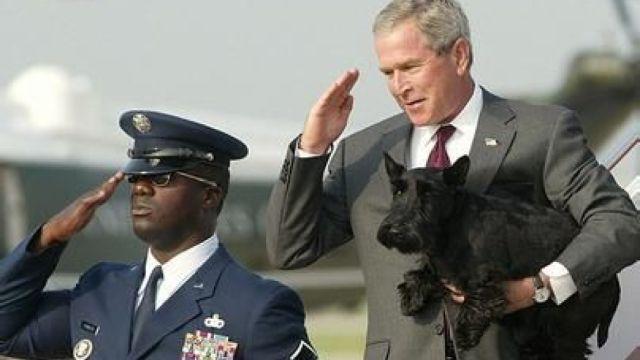 小布什称爱犬遭普京嫌弃:这也算狗
