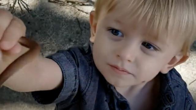 最年幼捕蛇手:一岁时就与蛇为伍