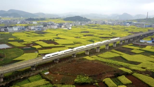 航拍:高铁穿越油菜花海,美如田园画