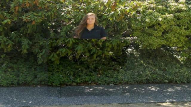 真的有哈利波特隐形斗篷?