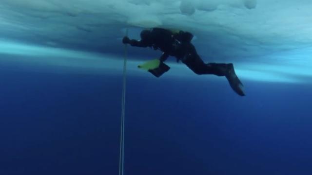 游弋极寒之地:南极冰川下潜水科考