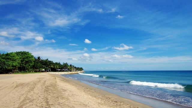 不想工作?让大脑去巴厘岛旅游吧