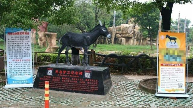 动物园为喂虎驴立碑:本欲生儿育女
