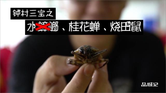 番禺︱姚大秋挑战钟村三宝