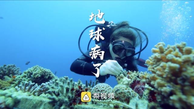 全球变暖致海洋酸化,珊瑚死亡!