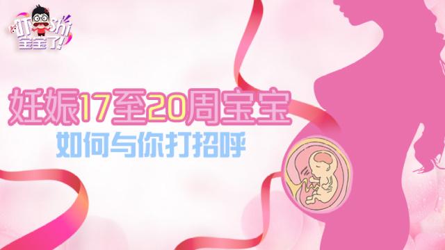生命的律动:20周宝宝在肚子里踢腿