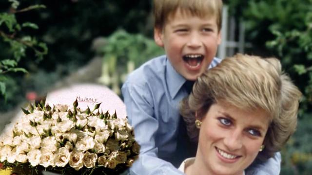 戴安娜王妃葬礼:王子为母献白玫瑰