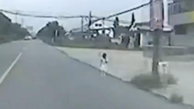 心大!小女孩托儿所走失,马路上徘徊