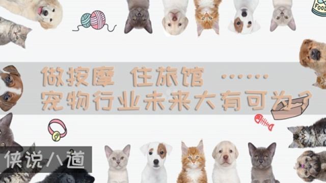 宠物行业未来大有可为?