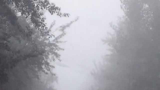 石家庄大雾迷城,周边高速全部关闭