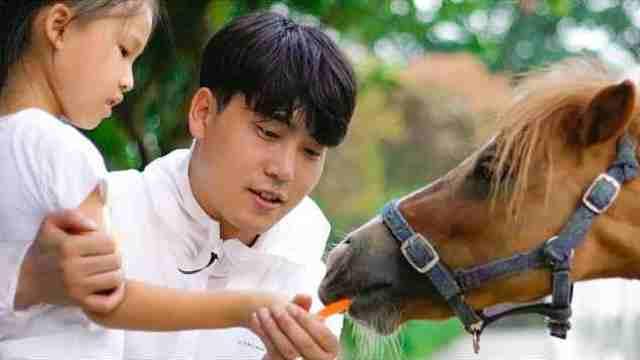爱与尊重,孩子马背上的力量艺术