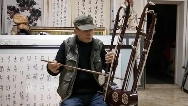 四种琴变一把,这种乐器你会玩儿?
