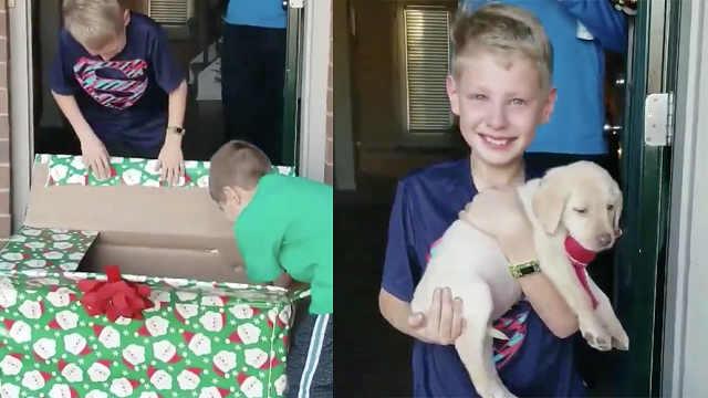 失去爱犬后收到惊喜,男孩激动落泪