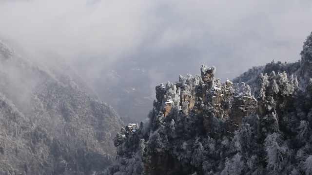 张家界雪后美景!漫山遍野玉树琼枝