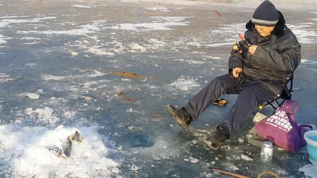 市民汾河湿地凿冰钓鱼:狗狗很爱吃