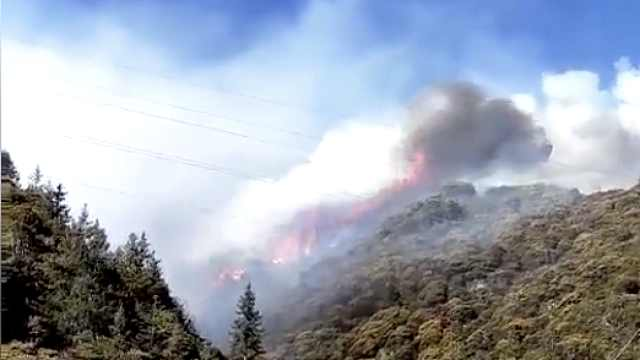 甘孜雅江发生森林火灾400村民疏散