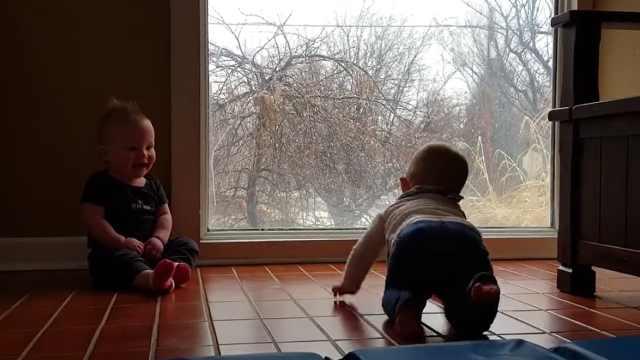 双胞胎看雪咯咯笑,笑声太治愈