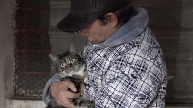大叔卖房养猫数百只:猫比儿子重要